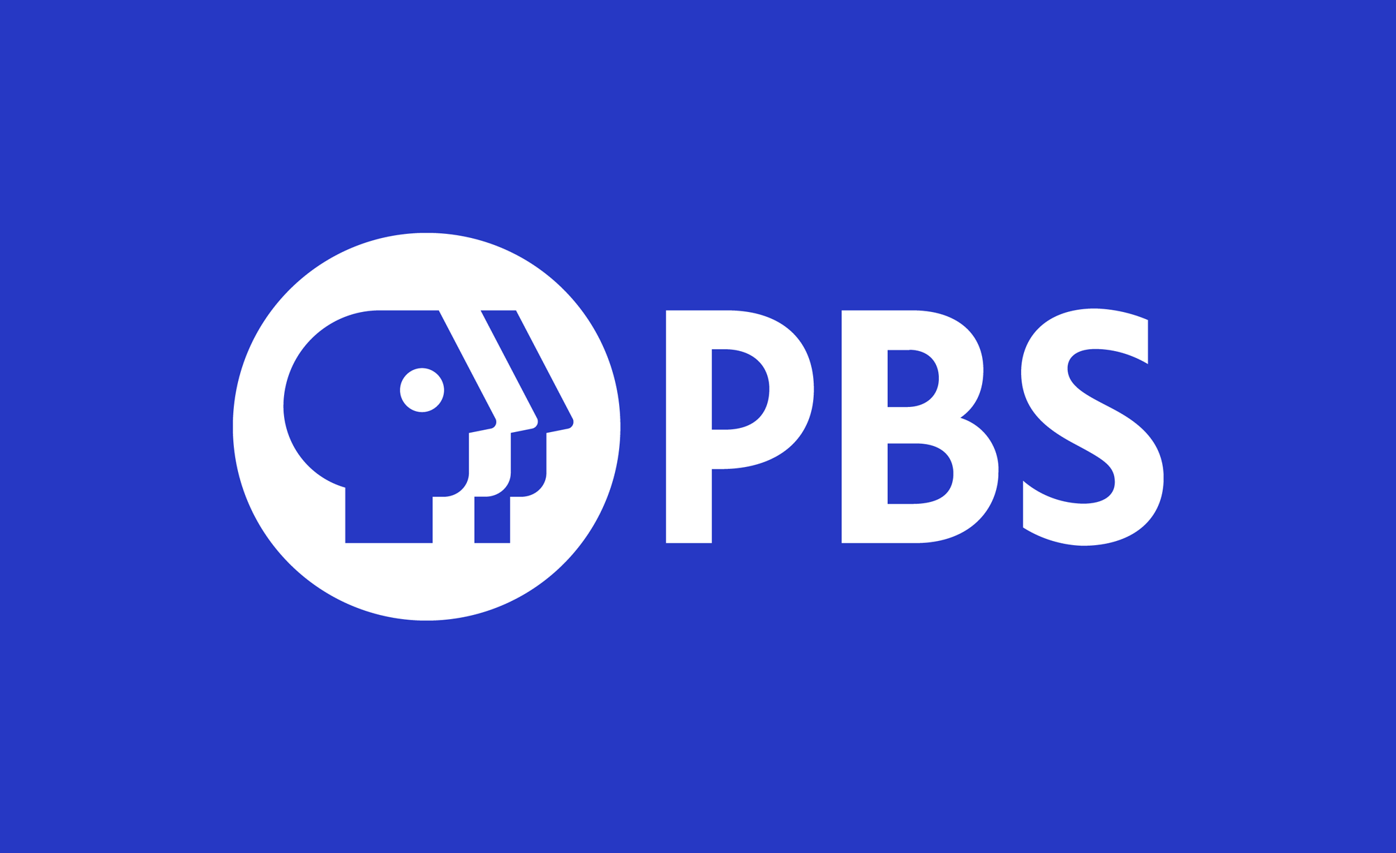 https://sensibleshoes.tv/wp-content/uploads/2020/06/pbs_2019_logo.png